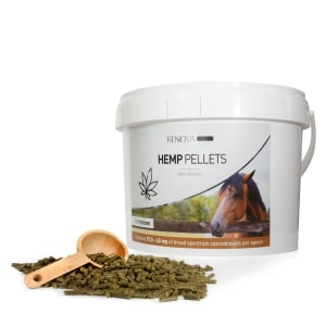 Back in balance with CBD horse food